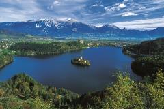 beautiful-bled_resized