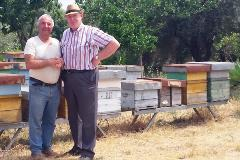 Sharing experiences with local beekeepers