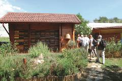 Group visiting typical Slovenian bee house